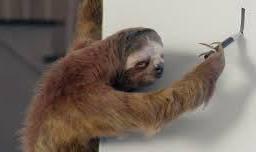 sloth ad